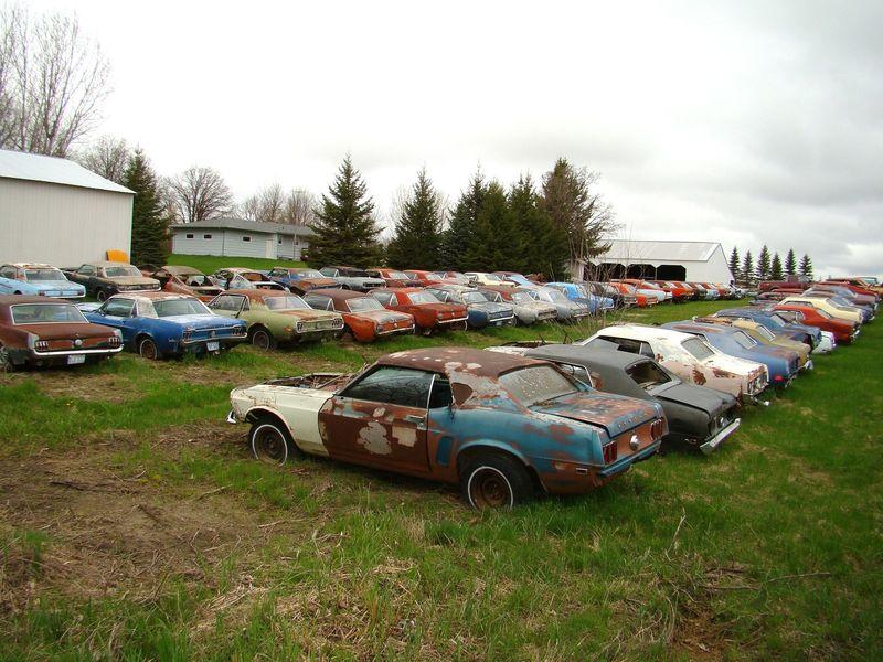 Own a Mustang Junk Yard! | RustingMuscleCars.com