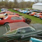 Huge Mustang Junk Yard for Sale 03