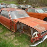 Huge Mustang Junk Yard for Sale 05