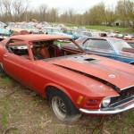 Huge Mustang Junk Yard for Sale 06