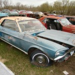 Huge Mustang Junk Yard for Sale 07
