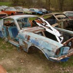 Huge Mustang Junk Yard for Sale 08