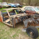 Huge Mustang Junk Yard for Sale 09