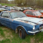 Huge Mustang Junk Yard for Sale 10