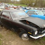 Huge Mustang Junk Yard for Sale 11