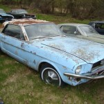 Huge Mustang Junk Yard for Sale 12