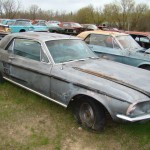 Huge Mustang Junk Yard for Sale 13