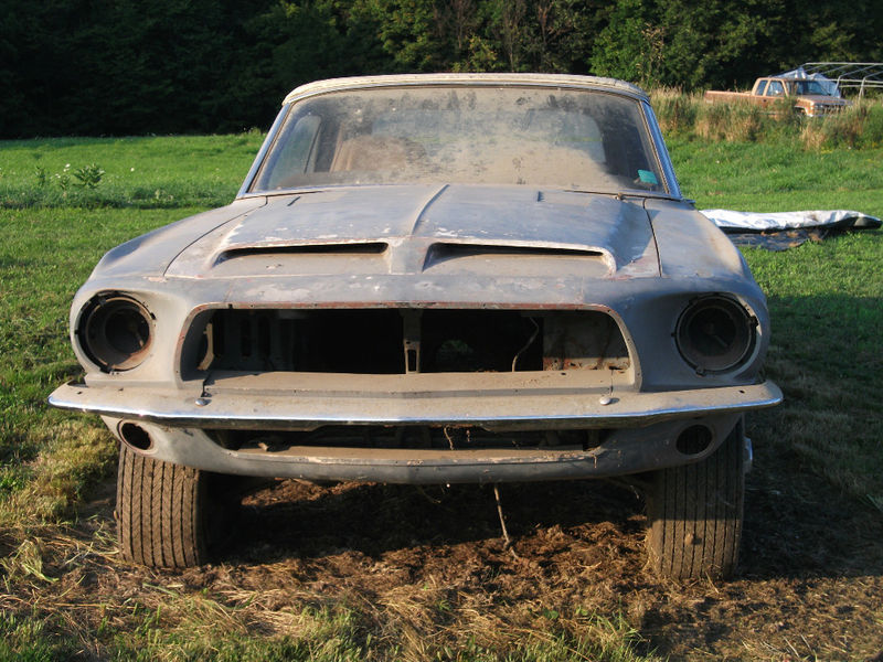 67 Shelbygt500 Project For Sale