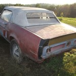 1968 Shelby Clone Barn Find for sale 12