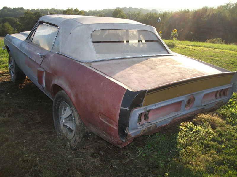 1968 Shelby Barn Find? | RustingMuscleCars.com