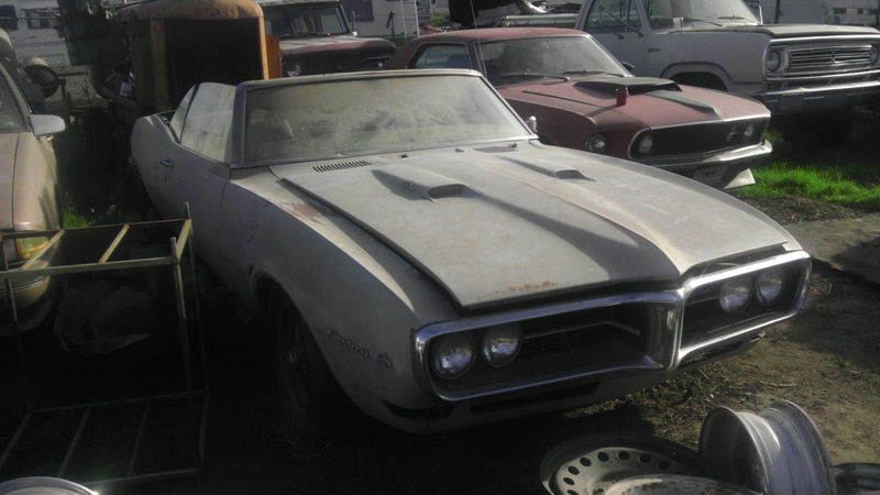 List of Synonyms and Antonyms of the Word: 67 Firebird Craigslist